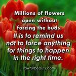 flowers_open